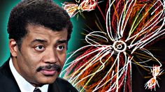 A Brief History of Everything, feat. Neil deGrasse Tyson~ Perfect for a good simple explanation of how we are star stuff!!