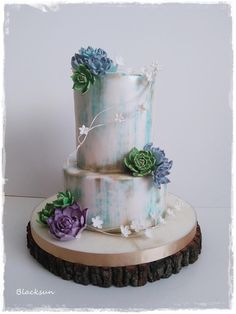 Wedding cake with succulents - cake by Blacksun