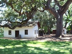 Adobe house in the shade of a beautiful oak tree. Cool, quaint, and homey.