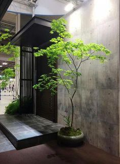 31 Unique Garden Fence Decoration Ideas to Brighten Your Yard - The Trending House Japanese Home Design, Small Japanese Garden, Japanese Style House, Japanese Interior, Interior Modern, Indoor Trees, Indoor Plants, Interior Garden, Interior Plants