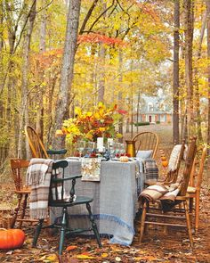 Gather with loved ones for a supper beneath fiery fall foliage. Let us know what dish you'd bring to this blissful get-together. #southernladymag #tablescape #tablescapes #alfresco #alfrescodining #outdoordining #southernautumn #flowers #autumnpalette