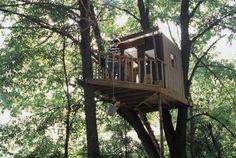 Como fazer uma casa de fadas em uma árvore | eHow Brasil