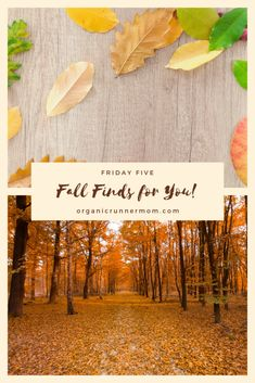 Friday Five: Fall Finds for You! Organic Argan Oil, Organic Coconut Oil, Spiritual Awareness, Spiritual Awakening, Organic Recipes, Friday, Skin Care, Fresh, Mom