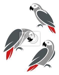 серый попугай - Поиск в Google
