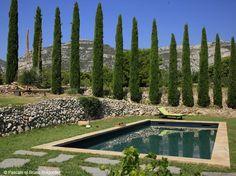 Une piscine bleue pour rêver un peu...