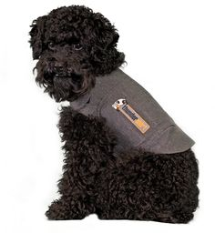 The development team at Thundershirt had 5 main objectives:  Easy to put on and take off,  Easy to create a snug, comfortable fit,  Attractive, durable fabric that resists collecting hair,  Attractive looking when worn,  Inexpensive.