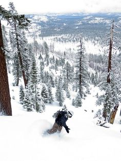 #winter_adventure  Echo Mermaid Backcountry, South Lake Tahoe | Photo by Ben Fish