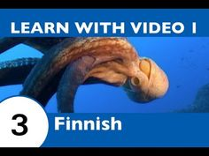 Learn Finnish with Video - Will Help Keep You Afloat with Marine Life Vocabulary! Learn Finnish, Relaxing Day, Marine Life, Finland, Vocabulary, Learning, Youtube, Studying, Teaching