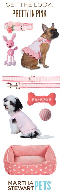 Get the Look: Pretty in Pink with #MarthaStewartPets! Only @petsmartcorp