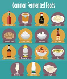 Commonly Fermented Foods