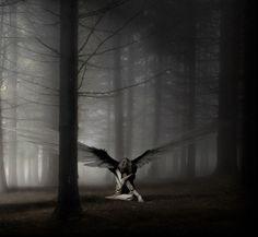 Dark Angel  Deadly Bitez Poetry