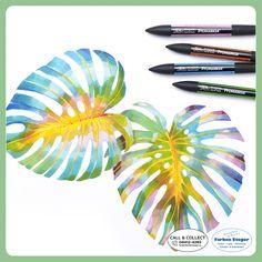 Professionelle Marker mit zwei Spitzen - ideal für Layout, Zeichnungen, Comic und Designs. Sie bieten eine große Auswahl brillianter Farben zu einem sensationell günstigen Preis. #winsorandnewton #promarker #stifte #marker #texturen #scrapbooking #handlettering #kauflokal #farbensteger #shopping #josalzburg Designs, Marker, Comic, Layout, Accessories, Deco, Pens, Drawing S, Page Layout