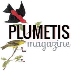 Plumetis Magazine - Art & Crafts et Do It Yourself
