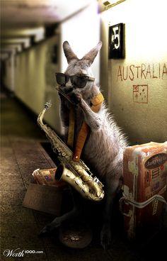 XOO Photo :: Busking Jazz Player Kangaroo - Kangaroo playin' a little jazz in the subway.