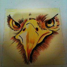 Eagle in colored pencils