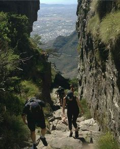 Sam, Cait, Cesar and Lauren are climbing the Table Mountains. Cope Town. South Africa