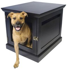 Dog house/End table? That would have to be one huge end table for my pup..