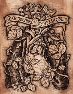 Love the rendering style and the title banner. Poison Oak, Tattoo Designs, Banner, Skull, My Style, Tattoos, Art, Banner Stands, Art Background