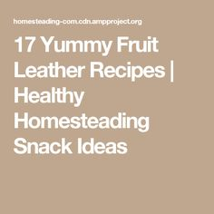 17 Yummy Fruit Leather Recipes | Healthy Homesteading Snack Ideas
