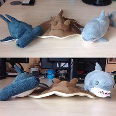 Fin-ishing the week with our National Marine Aquarium buddies in honour of #SharkWeek & Shark Trust UK