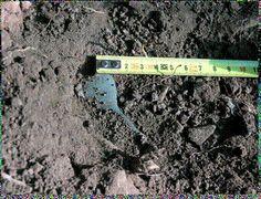 Archaeoethnologica: A Idade do Bronze em Portugal  site: Fraga dos Corvos