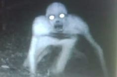 In December of 2010, a nature photographer checked on a trail camera he'd set up to film wild animals in a reserve in Morgan City, Louisiana. The camera was smashed, but its SIM card survived. When the photographer uploaded the camera's final images he was shocked at what he found. Instead of a wild animal, his camera caught the image of a ghostly, near-transparent humanoid figure.