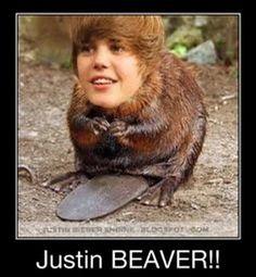 Funny Justin Bieber (14 Pics)