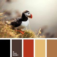 color naranja rojizo, color rojizo ladrillo, gris oscuro, gris violeta, marrón amarillento, marrón claro, marrón oscuro, negro, negro y marrón, pelirrojo, rojo apagado, rojo naranja, tonos marrones.