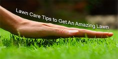 Lawn Care Tips to Get An Amazing Lawn. #landscaping