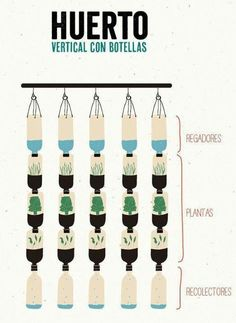 Huerto vertical reutilizando botellas de PET