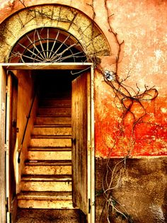 ♥♥♥ decaying mix of brown, gold, and orange
