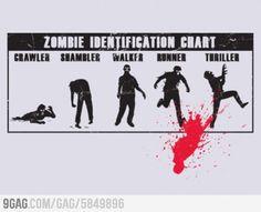 Zombies Identification Chart
