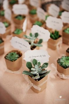 35 Super ideas for succulent wedding favors diy place cards Creative Wedding Favors, Wedding Gifts, Our Wedding, Dream Wedding, Wedding Table, Wedding Souvenir, Wedding Favours Diy, Wedding Invitations, Wedding Church