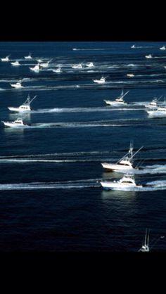 Fishing Boats                                                       …