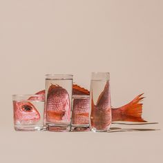 Foods Distorted Through Liquid and Glass in Photographs by Suzanne Saroff - In her ongoing series titled Perspective, photographer Suzanne Saroff creates fractured and skewed - Glass Photography, Reflection Photography, Still Life Photography, Creative Photography, Perspective Photography, Object Photography, Experimental Photography, Photography Ideas, A Level Photography