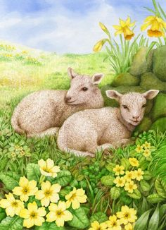 Valerie Greeley - VG758 two lambs.tiff