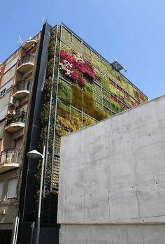 Groen muren idee voor de fietsenstalling