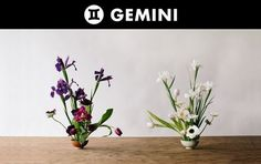 Floral Arrangements To Try Based On Your Zodiac Sign - Astrology Signs