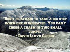 Don't be afraid to take a big step when one is indicated.  You can't a chasm in two small jumps. - David Lloyd George.  Quotes we like from www.giraffecvs.co.uk