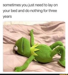 New Memes Funny Hilarious Thoughts Ideas Kermit Der Frosch Meme, Kermit The Frog Meme, Funny Kermit Memes, Funniest Hilarious Memes, Crazy Funny Memes, Really Funny Memes, Stupid Memes, Funny Relatable Memes, Haha Funny