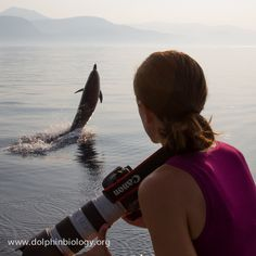 Dolphin Biology and Conservation: Silvia and dolphin #wildandfree