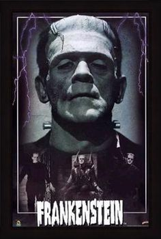 http://www.posters.ws/images/972581/frankenstein.jpg