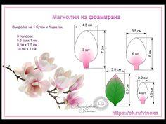 cherry blossom                                                                                                                                                                                 More