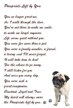 I hope I will never use this ...however ... a beautiful sentiment Favorite Quotes. Loss of a beloved pet.