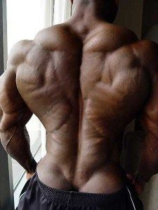 Round 14: Is Training To Failure Necessary To Build Muscle Mass?
