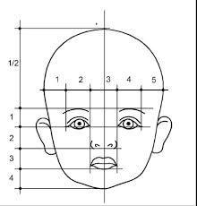 baby proportionen - Google-Suche