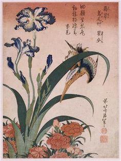 Kingfisher,carnation, iris - Katsushika Hokusai