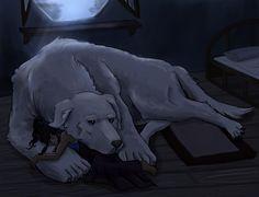 Korra and Naga. Korra uses Naga as a bed just like Aang used Appa.