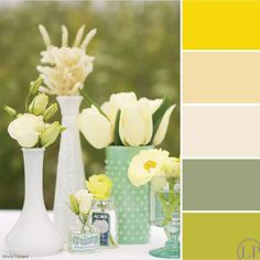 Citron-sauge-buttermilk-colonial-white-celery-buttery-white