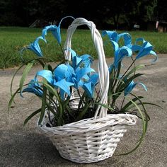 Something like this origami lilies would look awesome as table decorations for my baby's baptism.